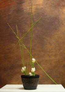 Ikebana di Rita Civitarese
