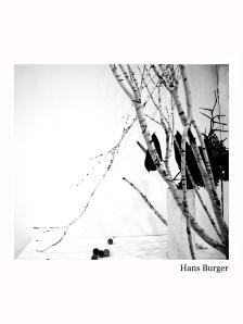 hansburger-2013-ikebana-lr