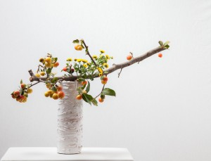 """Gisella de Donno""  ""fruit bearing branches workshop by Ilse Beunen Photography: Ben Huybrechts"""