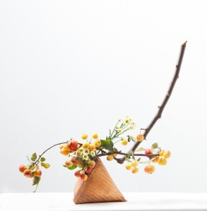 """Ilse Beunen""  ""fruit bearing branches workshop by Ilse Beunen Photography: Ilse Beunen"""