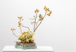 """Lucia Piereli""  ""fruit bearing branches workshop by Ilse Beunen Photography: Ben Huybrechts"""