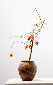 """Tatjana Felberg""  ""fruit bearing branches workshop by Ilse Beunen Photography: Ben Huybrechts"""