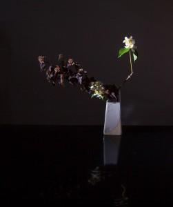 """""""vase: Sabine Turpeinen"""""""