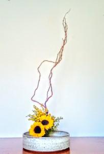 rosaria2