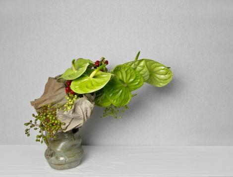 lucaanthurium (1)