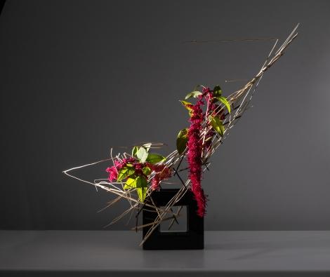 Ilaria Mibelli-20181028-082-Edit.jpg