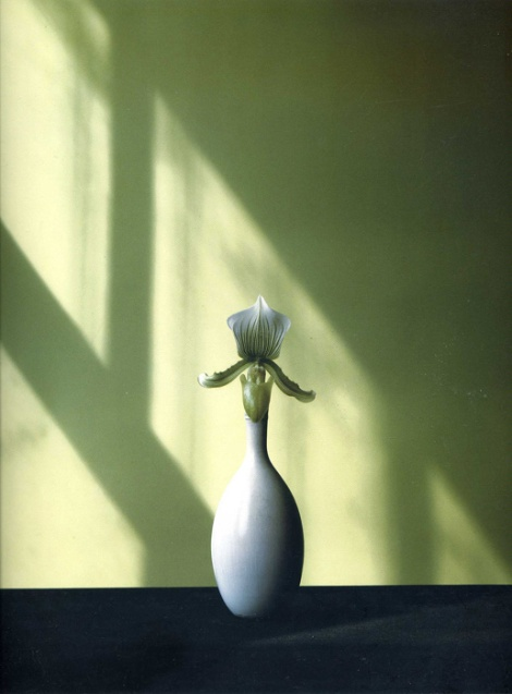 robert-mapplethorpe_07